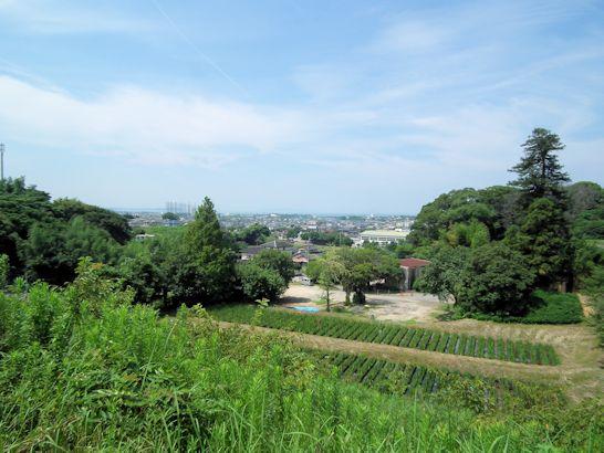 福津の自然