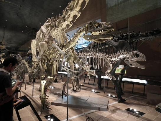 恐竜レプリカ