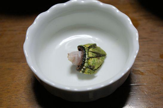 カメノテ(亀の手)の食べる部分