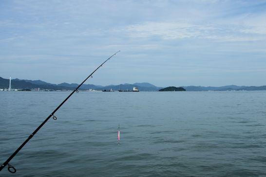 ルアーで釣りしてきた~♪