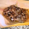 原木椎茸栽培の駒打ちの手順