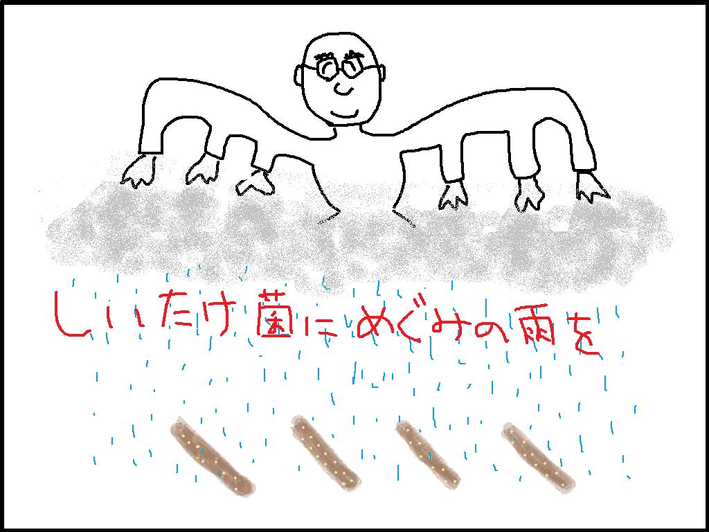 椎茸の菌に雨を・・・
