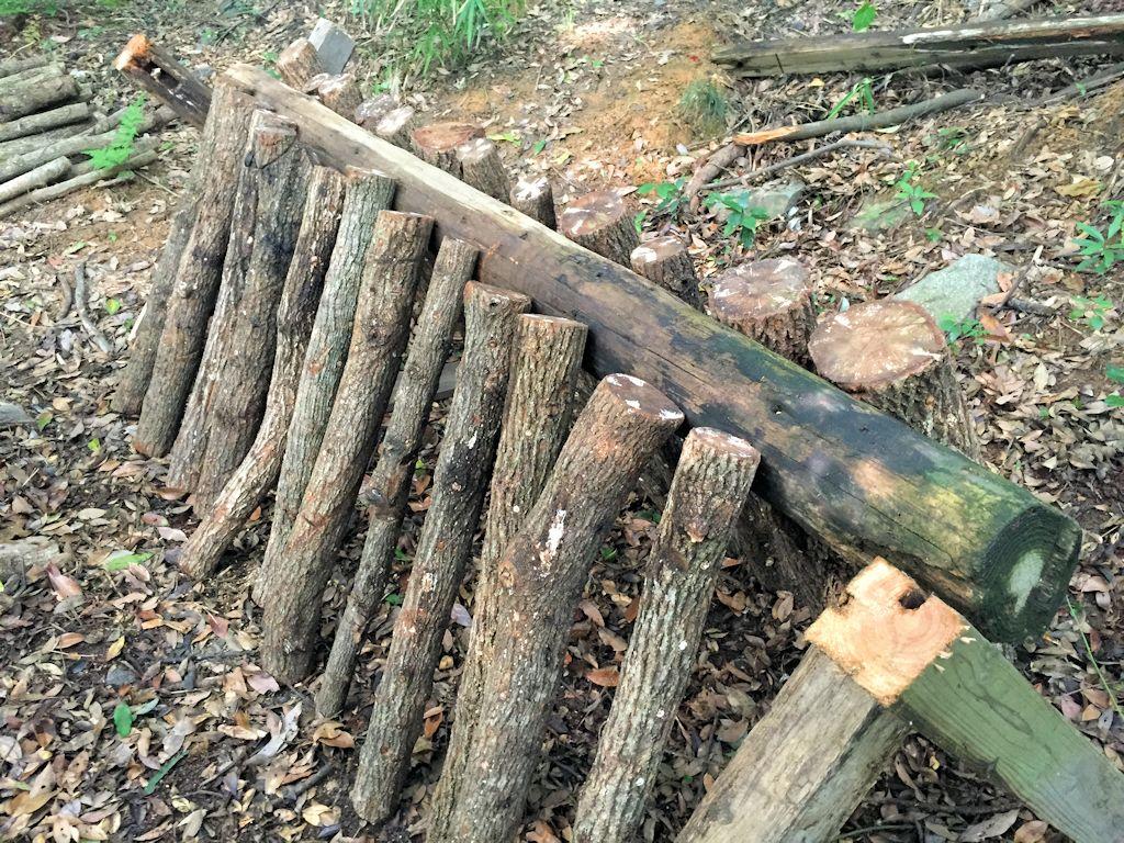 原木椎茸の本伏せ
