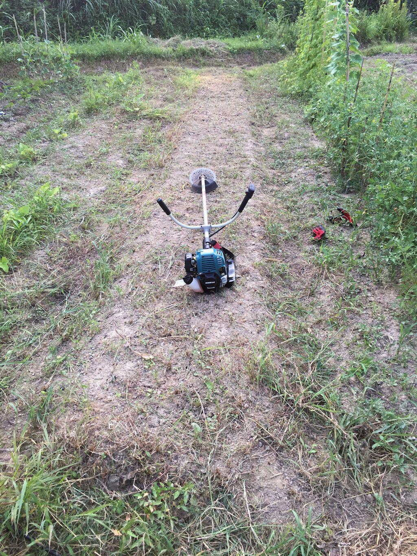 草刈り後の畑