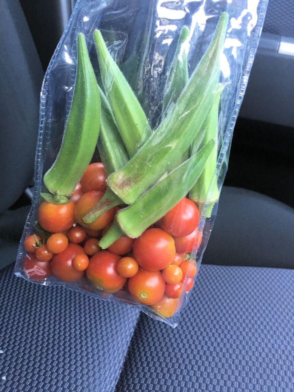 オクラとトマト収穫